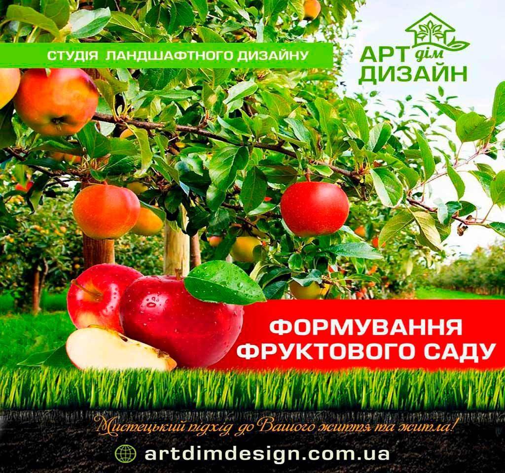 Формування фруктового саду